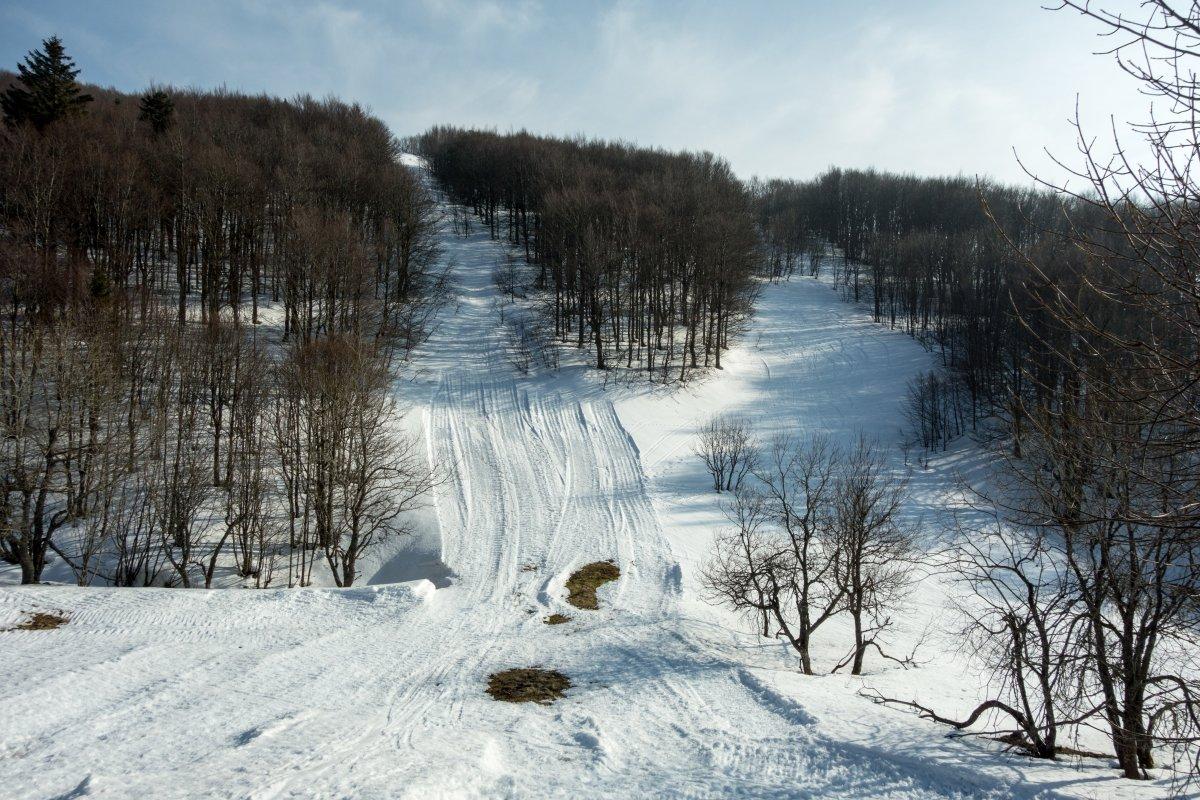 Schneise des ehemaligen Kastelberg-Schlepplifts
